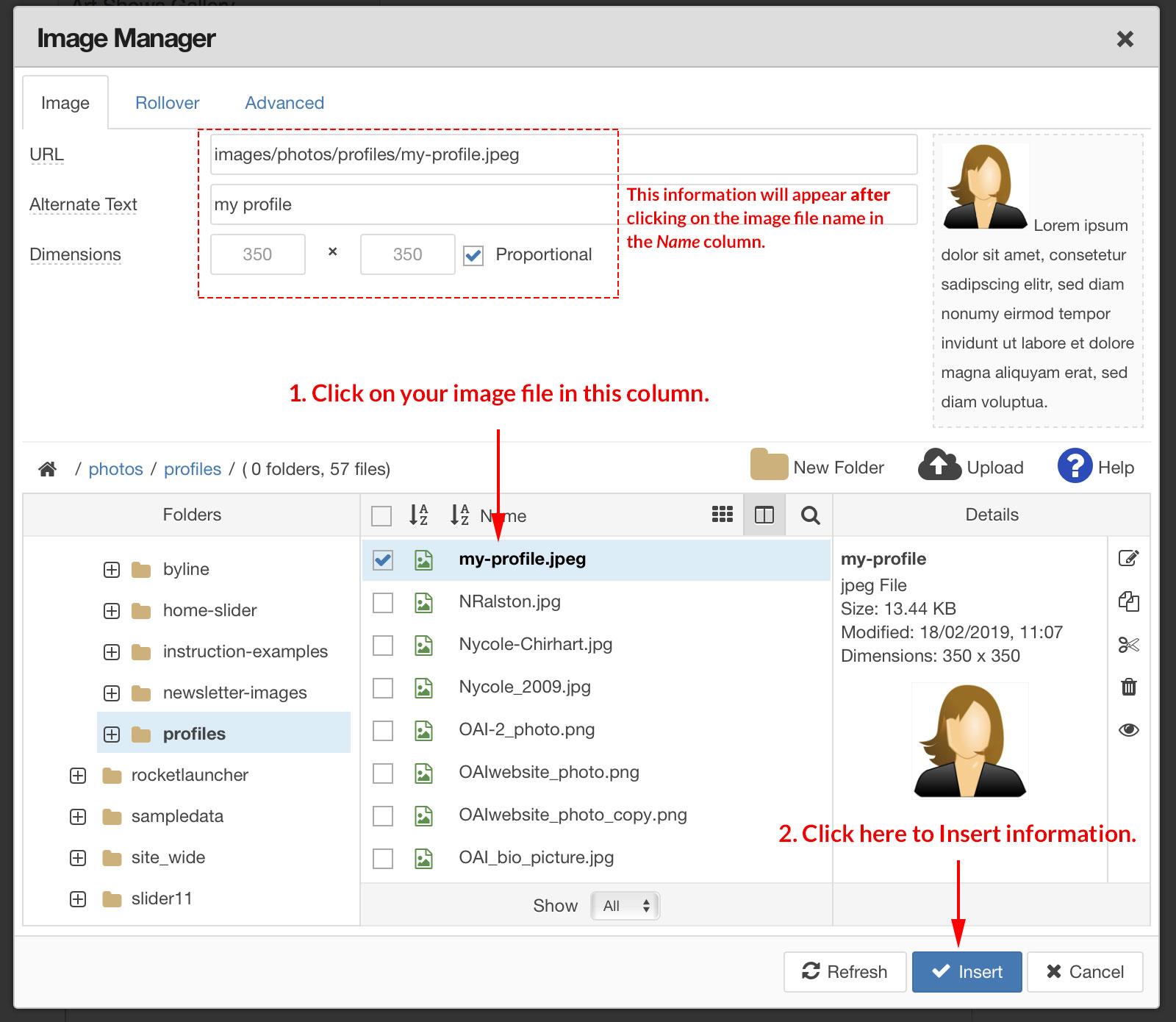 img manager insert image info v2